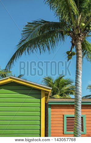 Beautiful vacation huts and palmtree in the bahamas