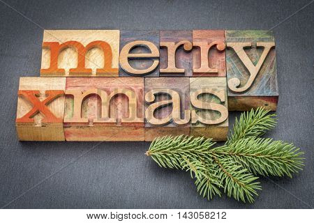 Merry Xmas (Christmas) greeting card in vintage letterpress wood type over slate stone with a spruce twig