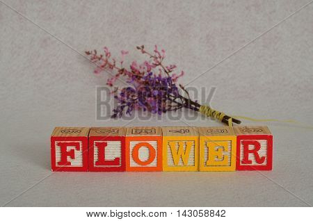 The word flower spelled with colorful alphabet blocks isolated on a white background with a bunch of flowers that is out of focus