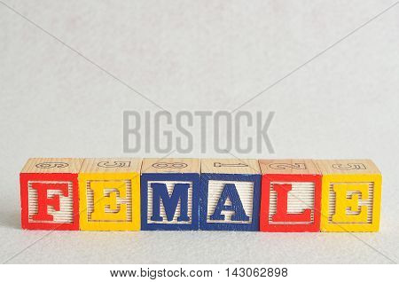 The word female spelled with colorful alphabet blocks isolated on a white background