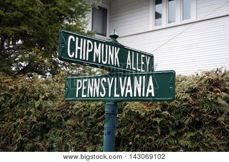 Street signs mark the intersection of Pennsylvania Avenue and Chipmunk Alley in Wequetonsing, Michigan.