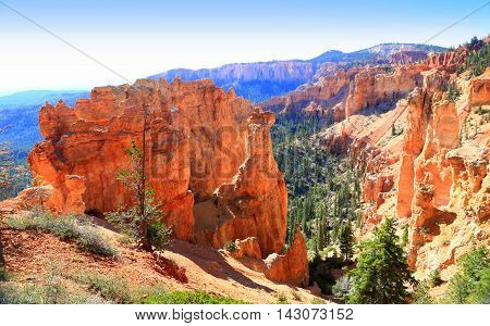 Near Rainbow Point at Bryce Canyon National Park  Utah Geological rock formations  hoodoos