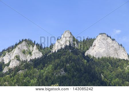 View on Three Crowns Massif in Pieniny Mountains in sunny day Poland