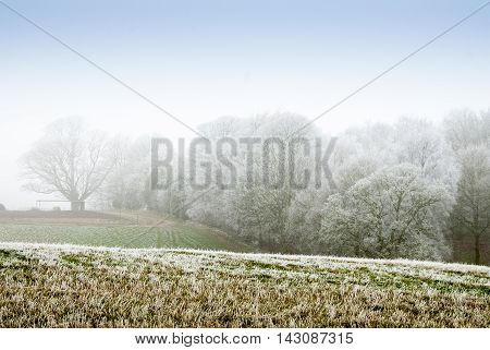 Frost Covered Farmland Showing Extreme Temperature Changes.