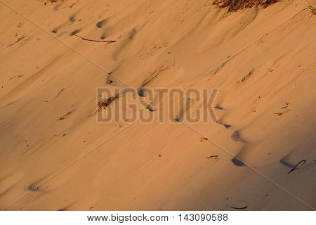 Sandy background at Big Sable Point, Michigan, USA