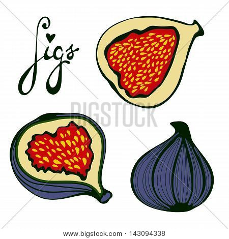 Hand drawn figs set. Eco food. Illustration in vector format.