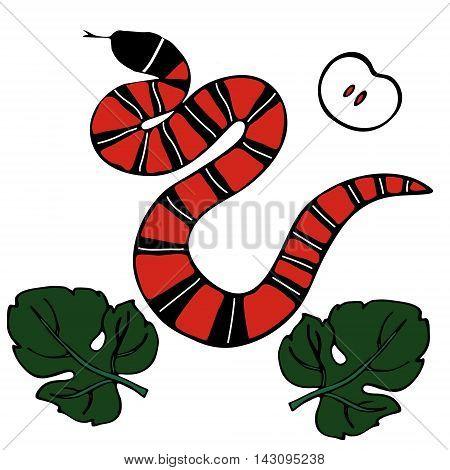 Snake apple and fig-leaf on white background. Print for designe fashion. Vector illustration.