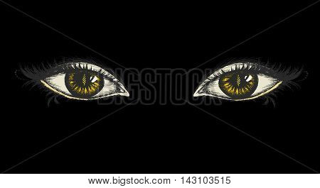 pair of eyes with yellow irises on a black background hand drawing vector illustration