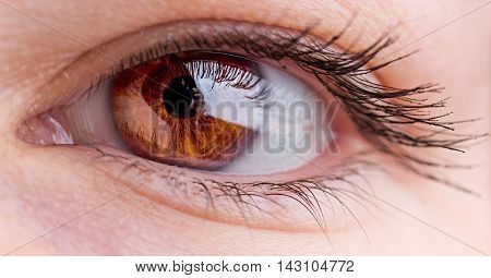 macro image of female beautiful hazel eye