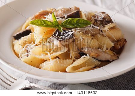 Italian Cuisine: Conchiglie With Porcini And Parmesan Close-up. Horizontal