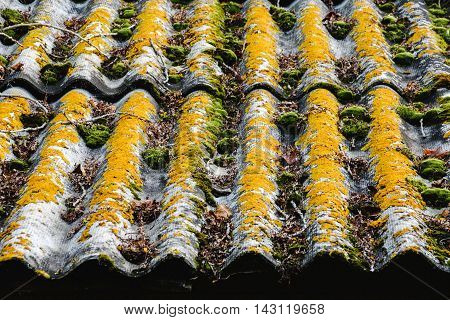 Texture Of The Old Roof