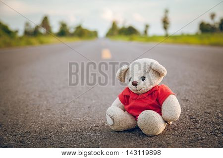 Lonely teddy bear on the road concepts like love and warmth.