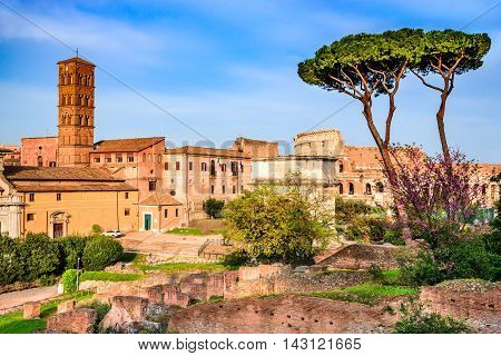 Rome Italy. Amazing scenery with Roman Forum ruins and Colosseum Flavian Amphiteatre.