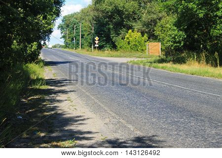 Asphalt road leading past the rows of trees