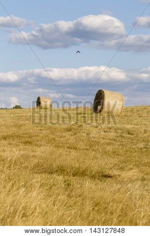 Golden hay bales with cloudy sky in the countryside.