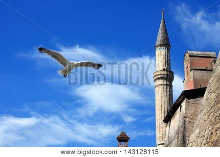 detail shot from Ayasofia mosque in Istanbul, Turkey.