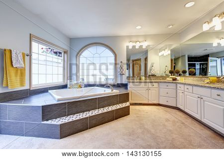 Master Bathroom With Large Mirror, Long Counter And Luxury Bathtub