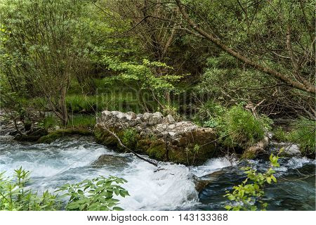 View of Lousios river in Peloponnese Greece.