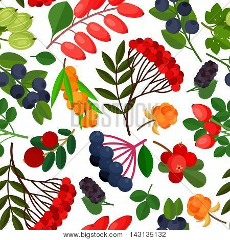 Seamless pattern with branches of yellow sea buckthorn, lingonberries, cranberries, cloudberries, rosehig and elderberry twigs on white background