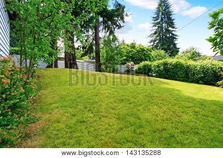 Backyard Well Kept Lawn, Nicely Trimmed Grass And Bushes