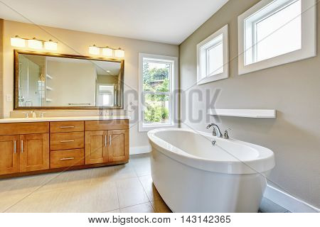 Bathroon Interior With Vanity Cabinet, Two Sinks And White Bath Tub.