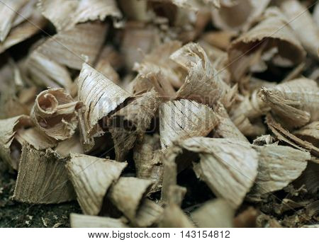 wood shavings sawdust large detail production boards