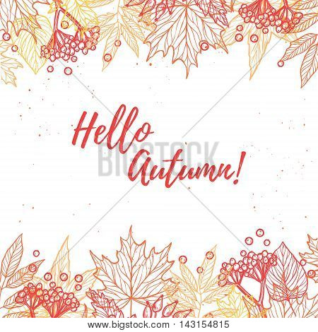 Hand Drawn Vector Illustration. Background With Fall Leaves And Berries. Forest Design Elements. Hel