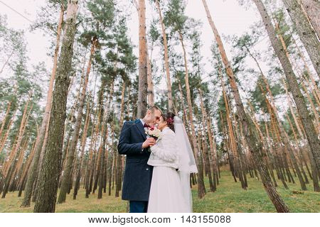 Happy stylish newlywed couple embracing in the young pine forest.