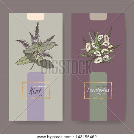 Set of two elegant labels with peppermint and eucalyptus bouquet color sketch. Aromatherapy series. Great for traditional medicine, perfume design, cooking or gardening labels.