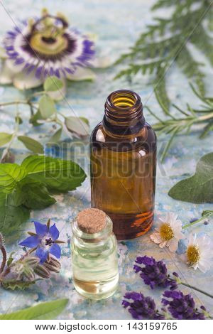 Herb leaf and flower selection , peppermint, sage, thyme, lavender and lemon balm with an aromatherapy essential oil glass dropper bottle .