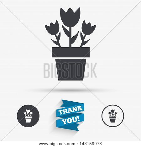 Flowers in pot icon. Bouquet of roses. Macro sign. Flat icons. Buttons with icons. Thank you ribbon. Vector