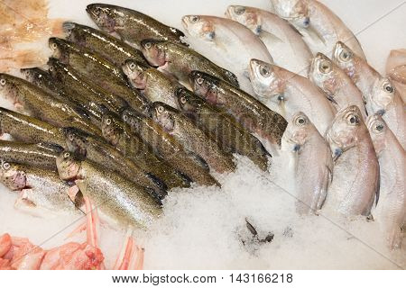 Choice Of Fish On A Market Display At Supermarket