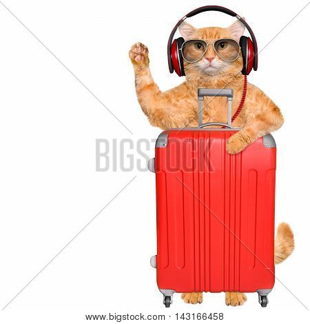 Cat headphones with a suitcase . Isolated on white.