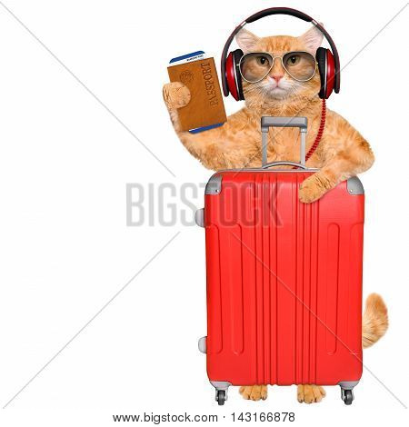 Cat headphones with a suitcase and document. Isolated on white.