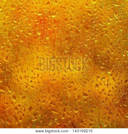 Rainy wet red orange fall autumn abstract eco seasonal natural blurred background with water drops