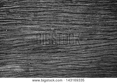 black and white tree texture background for input text
