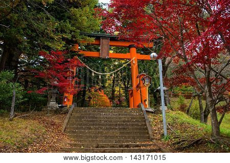 Red Torii Gate To Chureito Pagoda