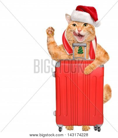 Cat in red Christmas hat with a suitcase.
