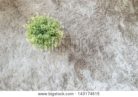 Closeup artificial plant in pot for decorate on gray carpet textured background in top view