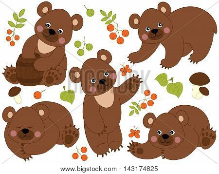Set of 5 vector cute bears with leaves mushrooms and berries