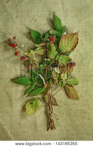 Raspberry.Dried herbs for use in alternative medicine.Herbal medicine phytotherapy medicinal herbs.For preparation of infusions decoctions tinctures powders ointments tea. Background green cloth