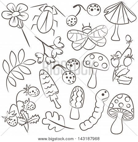 Vector doodle icon set with mushroom warm bug strawberry and leaf. Nature collection of childish characters and plants.