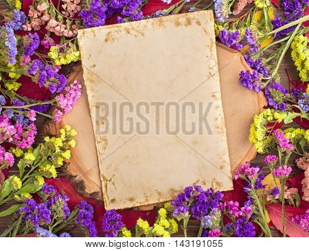 Dried multicolored statice flowers around retro card with copy space