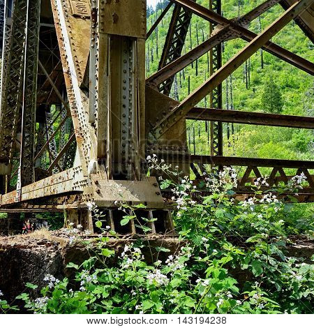 An old bridge in Westfir Oregon is being consumed by bushes and rust.