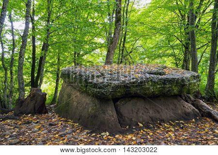 Dolmen In-field Autumn
