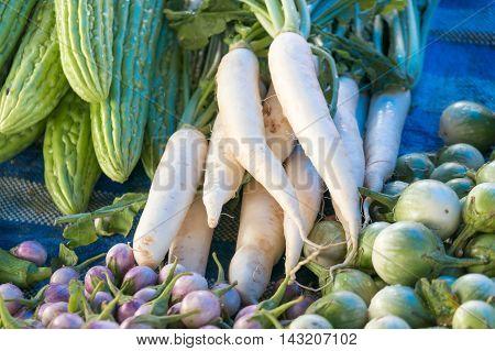 vegetable market in thailand  gourd eggplant radish etc.
