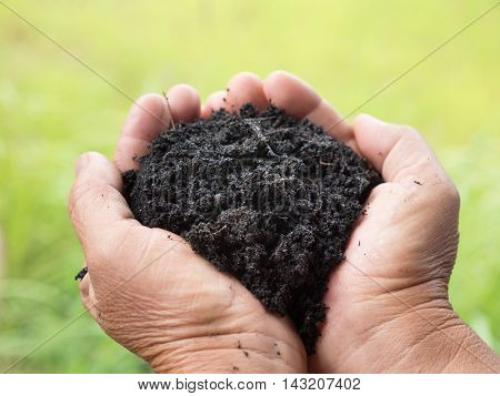 soil for planting on farmer hand over green background