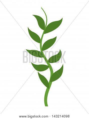 decorative algae aquarium isolated icon vector illustration design