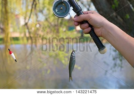 fisherman catching a fish on a fishing rod