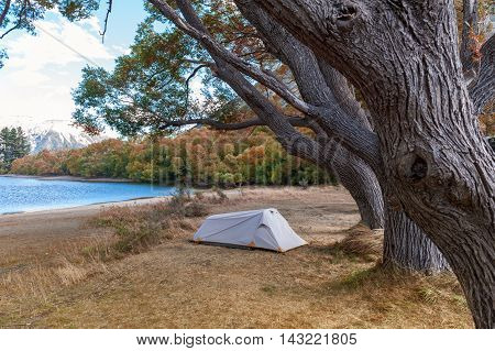 Campsite At Lake Pearson / Moana Rua Wildlife Refuge Located In Craigieburn Forest Park In Canterbur